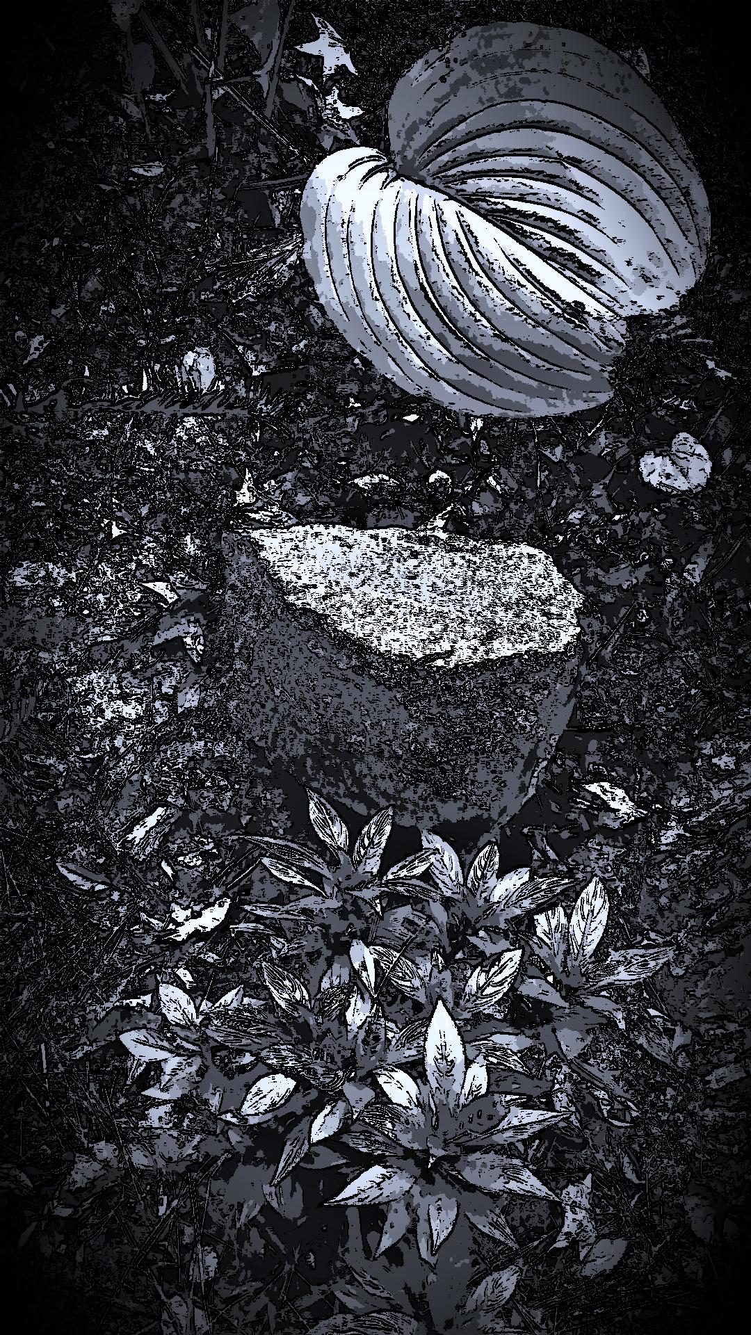 Shadow Garden.png