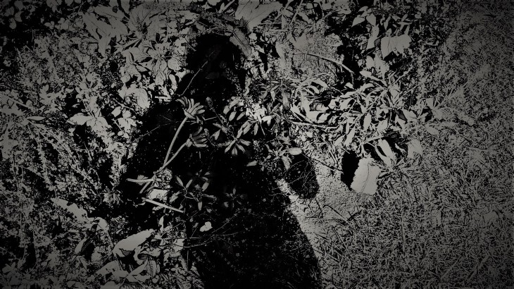 shadow II.png